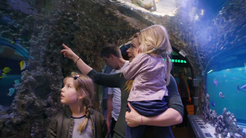 38b7532f8 Topp 5 barnevennlige aktiviteter i Bergen - visitBergen.com