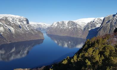 Sognefjord in a nutshell winter tour
